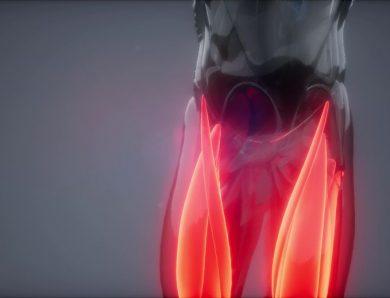 L'ostéopathie – une approche naturelle pour éliminer la cruralgie